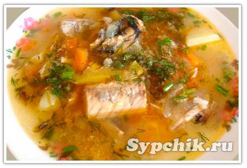 Щи из рыбы со свежей капустой рецепт